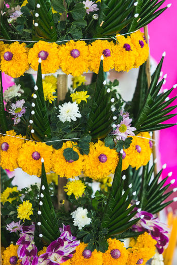 flowers handmade Art Beauty In Nature Close-up Daisy Day Flower Flower Head Fragility Freshness Growth Handmade Multi Colored Nature No People Ordain Outdoors Plant Springtime Yellow