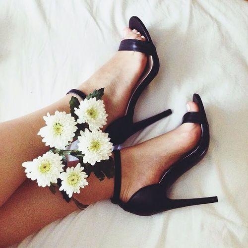 Blog Blogger Fashion Shoes Shopping Landroses Flower Plant Legs Art Kate Poland Deezee Sunday Weekend Beuty Beutiful  Hot Style Yop  Trendy 2015  Like IT 🐇☁️