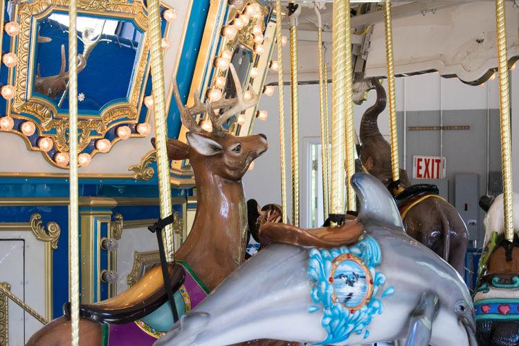 Amusement Park Amusement Park Ride Amusment Animal Representation Animal Themes Arts Culture And Entertainment Carosel Carousel Carousel Horses Day Horse Indoors  Mammal No People Ride