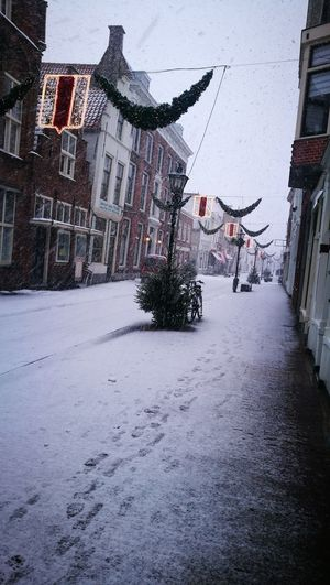 Snowy street in Brielle, the Netherlands Snow Snowy Street Wintertime Winter Street Christmastime Christmas Decoration Christmas Street Building Exterior Architecture Built Structure Outdoors Day City