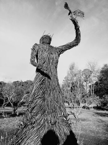 EyeEm Selects Outdoors Sky Day Tree Nature Park Sculpture Living Sculpture Trees Black And White Friday