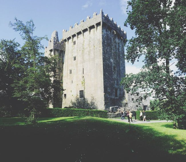 Architecture Built Structure Building Exterior Tree Tower History The Past Old Shadow Travel Destinations Medieval Old Ruin Lawn Outdoors Famous Place Footpath Day Castle Arch Local Landmark Blarney Castle Blarney Ireland Sky