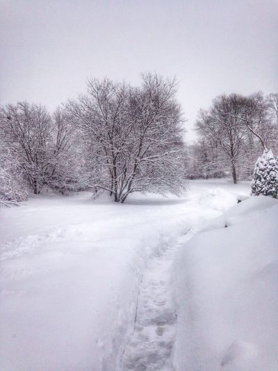 Yay.... It's snowing.... Again ... 😖 Beautiful Nature Taking Photos Iphoneonly IPhoneography Cold Cold Days Massachusetts Eye4photography  Snow ❄