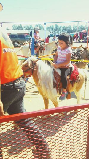 Horse Riding Pony Ride Pony Niece  Check This Out Beautiful Day Hanging Out Enjoying Life Todays Hot Look Awesome Day Color Portrait Capture The Moment Share Your Adventure Relaxing