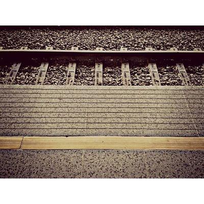 Trilhos, trilhas trilhadas.