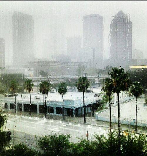 Florida Weather Rainy Days☔