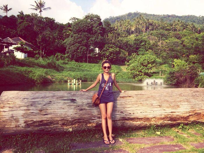Beautiful NatureTravelling Koh Samui