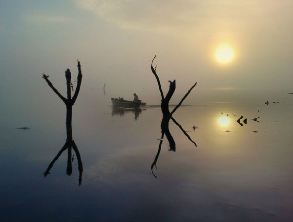 Gone Fishing Animal Themes Beauty In Nature Bird Boat Day Happy Time Lake Nature No People Outdoors Reflection Scenics Silhouette Sky Sun Sunset Tranquil Scene Tranquility Water Waterfront