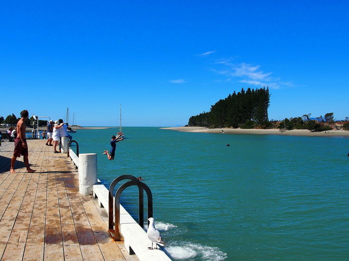 Jumping Off Dock NZ South Island NZ Toruism Blue Clear Sky Day Nature New Zealand Outdoors People Real People Sea Vacations Water
