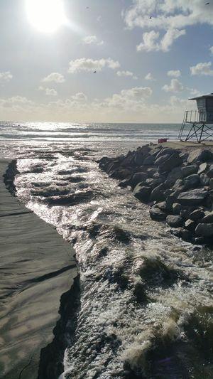 Oceanside Oceanside California Southern California California Beach Photography Beach Life San Diego County Ocean Sun Birds Birds In Flight Sea Gulls