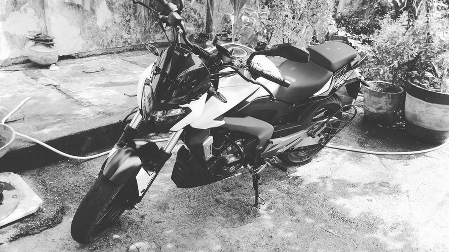 Bike Bikers Bikelife #bajajdominar Sunlight Land Vehicle Close-up