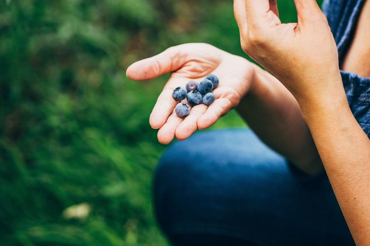 Cropped image of woman holding blueberries
