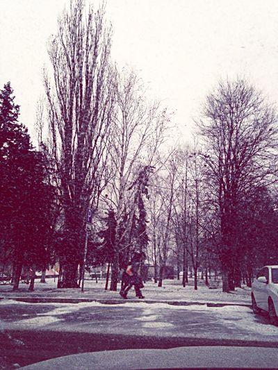 Вот и хлопушки с неба :))) Snow снег Happy New Year Скоро новый год