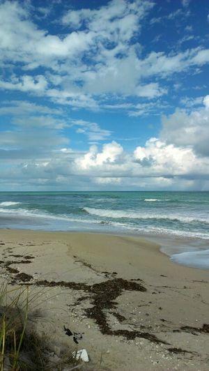 Beach Android  Florida HTC EVO 4g Lte Floridana Beach