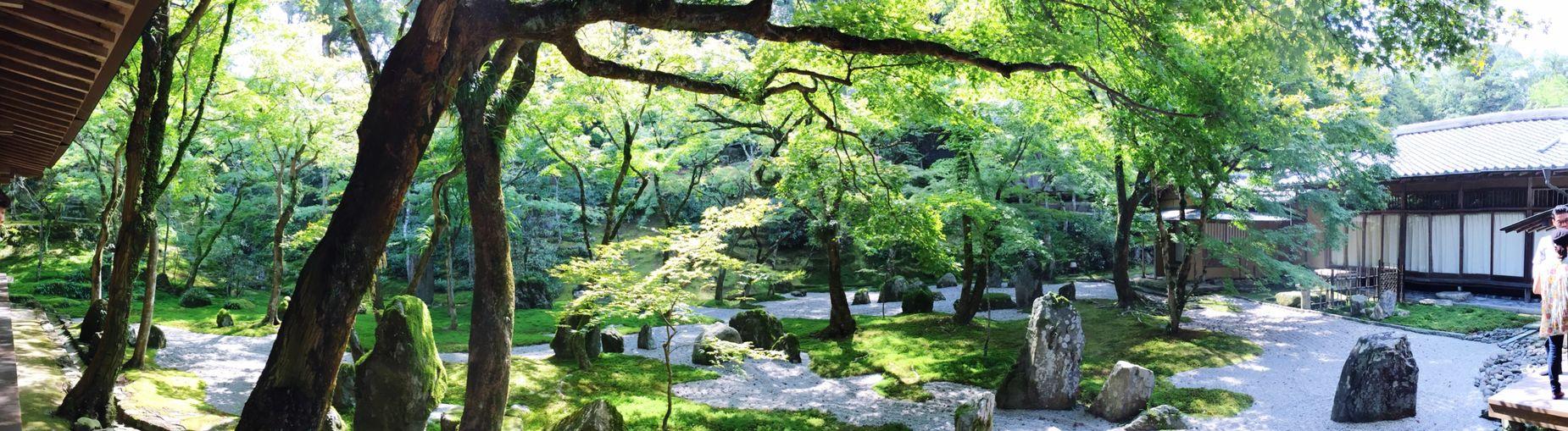 太宰府 EyeEm Japan Taking Photos Japan Cool Japan Nature Relaxing Relaxing