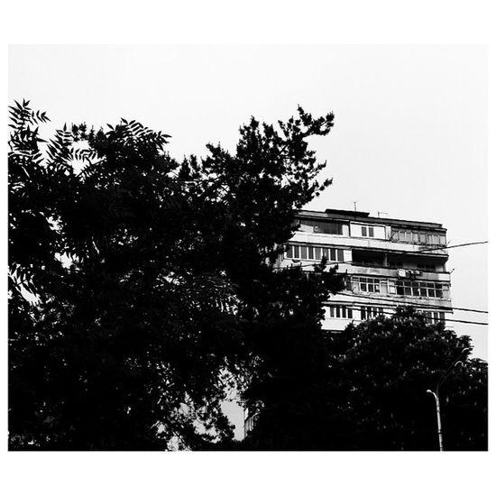 балконы многоэтажка