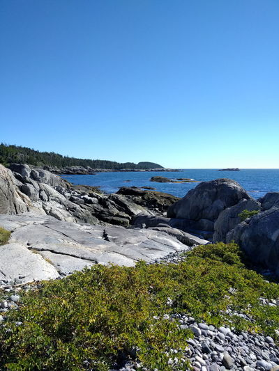 Coast Coastline Maine Maine Coastline Rocky Coastline Hiking Ocean Ocean View Nature Travel Destinations Sea Non-urban Scene Beach Rocky Rock - Object Day Shore Scenics Water Clear Sky Tranquil Scene Beauty In Nature Outdoors Rock Formation