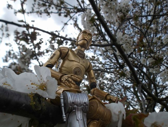 Tranquil Droid Revoltech Toyphotography C3p0 Starwars