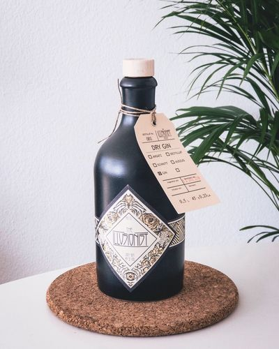 GIN Alcohol Bottle Close-up Communication Container Drink Food And Drink Gin, Glass - Material Houseplant Indoors  Nature No People Plant Potted Plant Refreshment Still Life Text Transparent Vase Wall - Building Feature Western Script