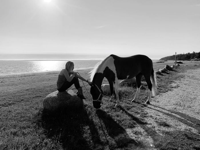 Woman with horse at beach against sky during sunny day
