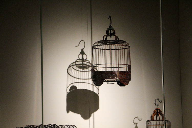Lighting Equipment Wall - Building Feature Hanging Indoors  Birdcage Cage No People Electric Lamp Illuminated Day Metal Electricity  Architecture Pendant Light Low Angle View Wall Home Interior Built Structure Ceiling Light Light And Shadow Seattle Art Museum