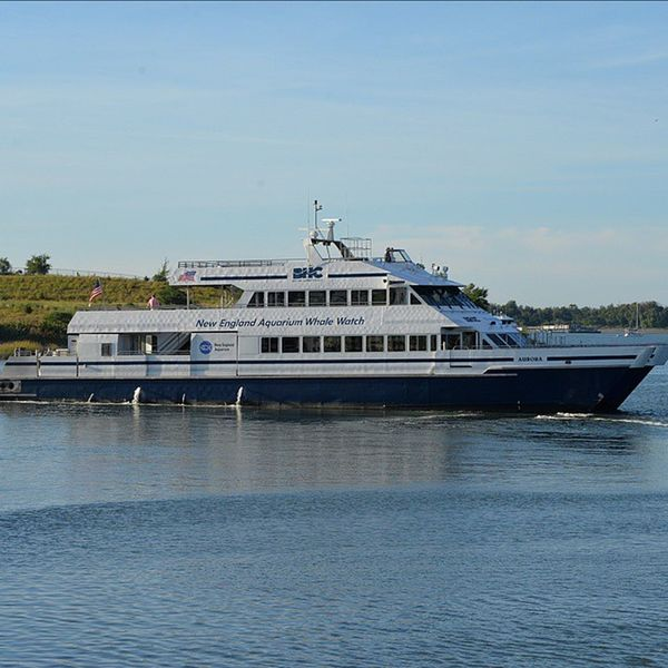 The boat i used to work on the Aurora !! BostonMassachusetts Bostonharborcruises BHC Boat Catamaran Mass Massachusetts