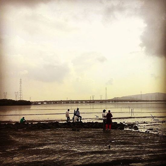 Vashi Bridge Arabian Sea Dry