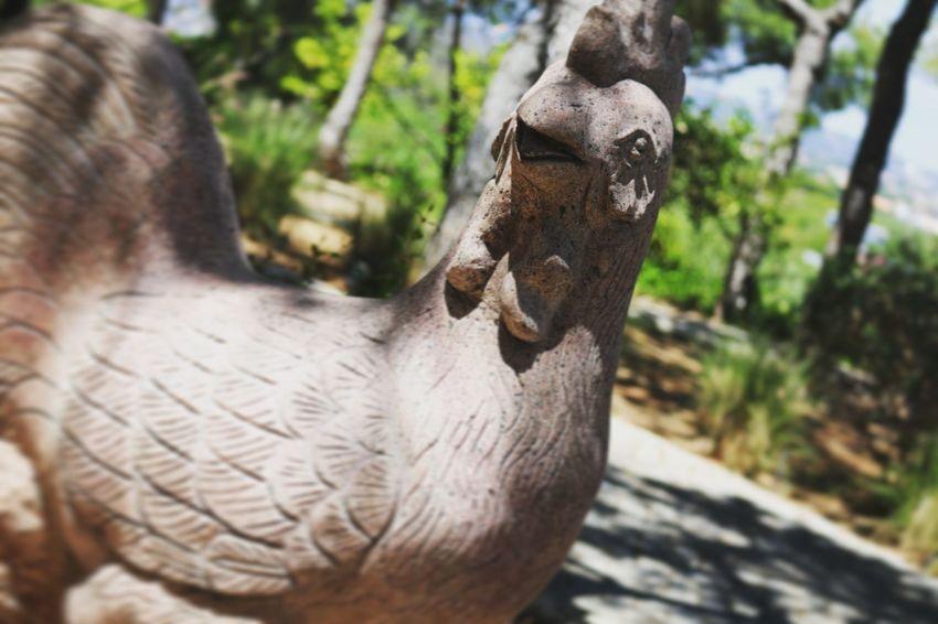 EyeEm Selects Ancient Civilization Sculpture Close-up Animal Body Part