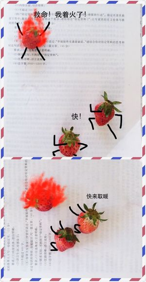 三个草莓的故事?Help!fire!!StrawberryyJokee