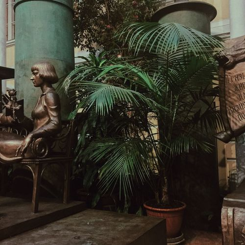 Tree Plant No People Day Architecture Nature Growth Representation Art And Craft Building Exterior Tropical Climate Outdoors Palm Tree Potted Plant Statue Sculpture Human Representation Built Structure Green Color Male Likeness