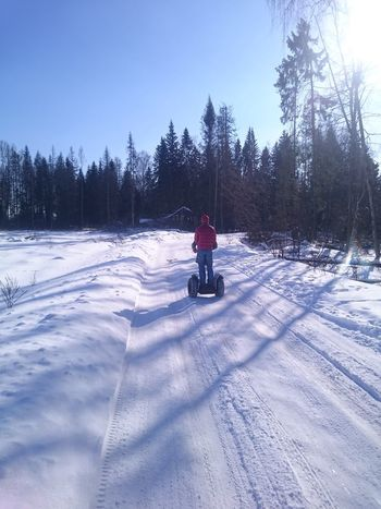 Taking Photos Hello World Relaxing Enjoying Life Taking Photos Russia Trip Sky Triping Nature Winter Forest Beautiful Nature Sun It's Cold Outside Home Segway Follow Followme