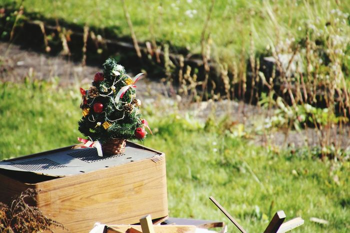 Christmas Tree Leading Lines ArtWork Christmas Decorations Xmas Tree Xmas Decorations Marry Christmas Xmas🎄 Marry X'mas Marrychristmas  Christmas 2015 X-mas 2015 Minimalobsession Learn & Shoot: Simplicity My Winter Favorites Bruchmühlbach-Miesau