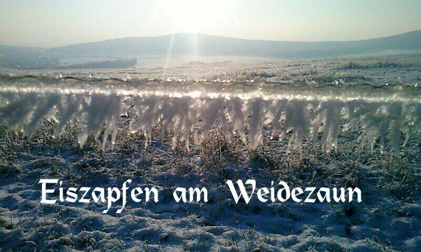 Natürlich in Kamenz, im Winter ;-)