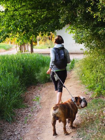EyeEmNewHere Dog Pets Domestic Animals Rear View Animal Themes One Animal Mammal Full Length Pet Leash Walking Dog Lead One Person Plant Adult Tree Day Outdoors Grass Only Women You And Me Moments Of My Life