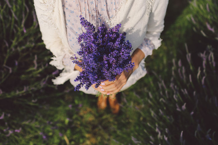 Beauty In Nature Blooming Bouquet Close-up Day Flower Flower Head Focus On Foreground Fragility Freshness Girl Growth Hands In Bloom Lavanda Lavander Lavander Flowers Lavanderfields Nature Outdoors Petal Plant Purple Selective Focus Stem