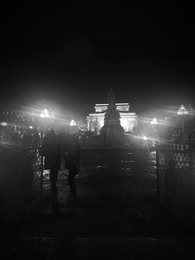 Rear view of people at night