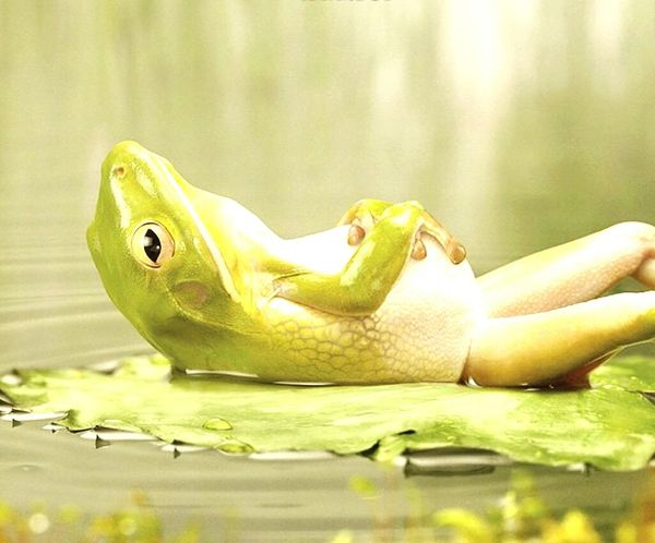 Deniz Sahil Güneş♡♥♡ ask.. Kadinlar Kizlar Hatunlar