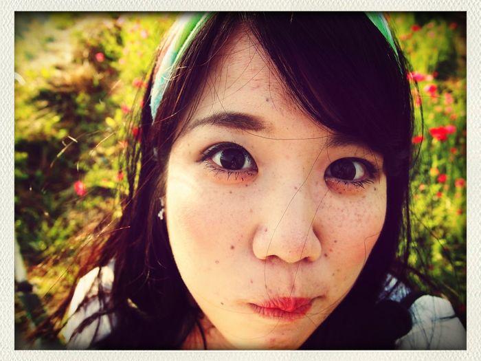 cameraman.Kosei Date Popy Flower