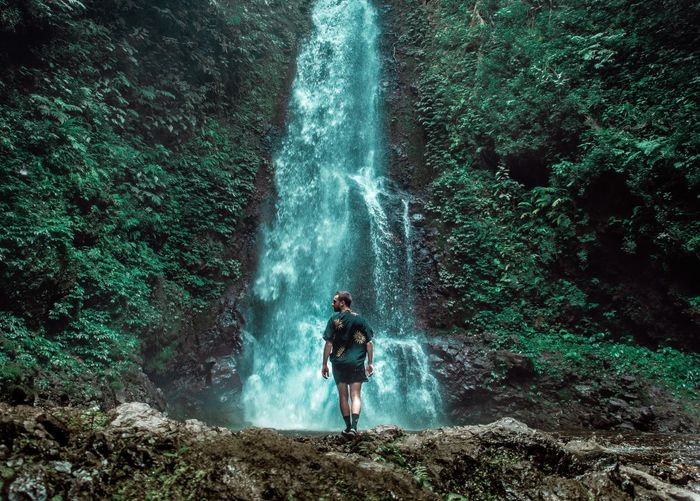 Full length rear view of man standing by waterfall in forest