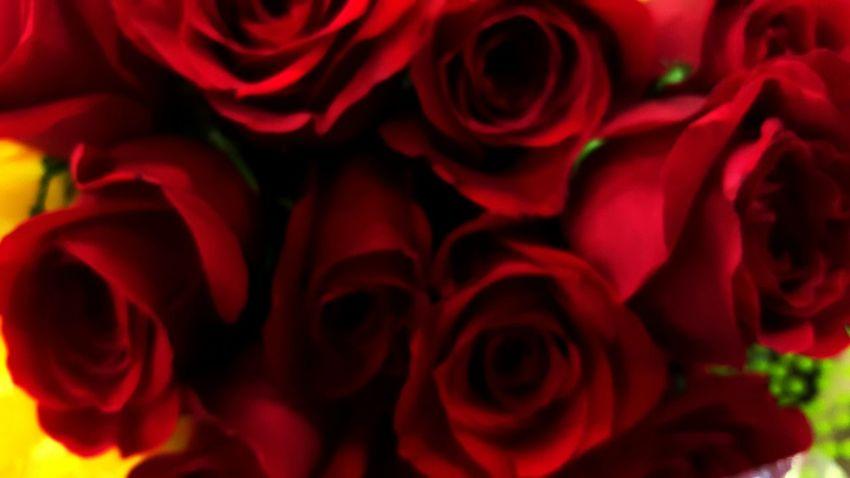 Roses Rose🌹 Bouquet Homedecor Homedesign Gift Ideas Flowers Flowers,Plants & Garden Springtime Spring Spring Into Spring Spring Flowers Spring Idea Spring Design Ikea Decor Ikeacanada Homedepot Garden Photography Rose4YOU