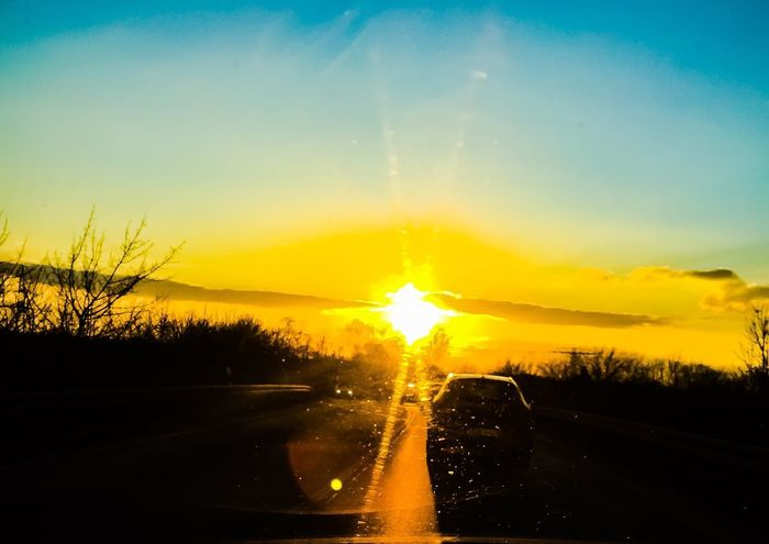 Sunset EyeEm Best Shots EyeEm Nature Lover Eye4photography  EyeEmBestPics EyeEm Best Shots - Nature Sunset Transportation Sky Car Road No People The Way Forward Nature Scenics Beauty In Nature Land Vehicle Silhouette Sun Car Point Of View Yellow Water Day Outdoors Tree Landscape