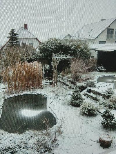 Good Morning... :) Snow Winter