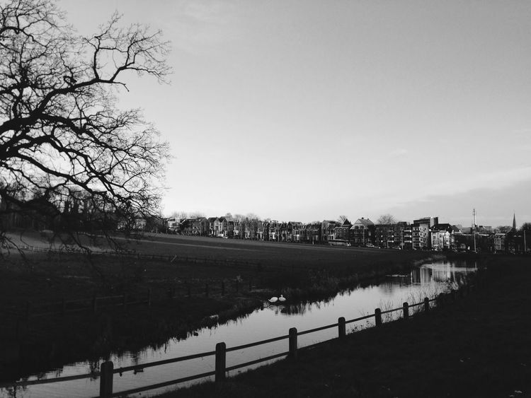 Nature meets city Nature City Arnhem