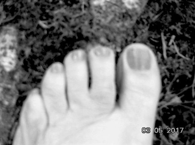 Human Body Part Low Section One Person Close-up Day Springtime St Agnes Human Foot St Agnes