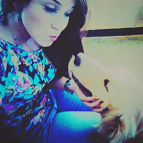 Dog belle Belleza Bella Linda Cachorro pic Pic