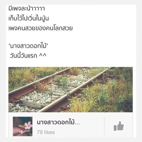 ฝากเพจคนโลกสวยร่ำรวยด้วยดอกไม้. 'นางสาวดอกไม้' แล้วจะเก็บดอกไม้มาฝากนะ Facebook Fanpage