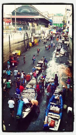Feira do peixe, ao lado do Mercado Municipal de Manaus.