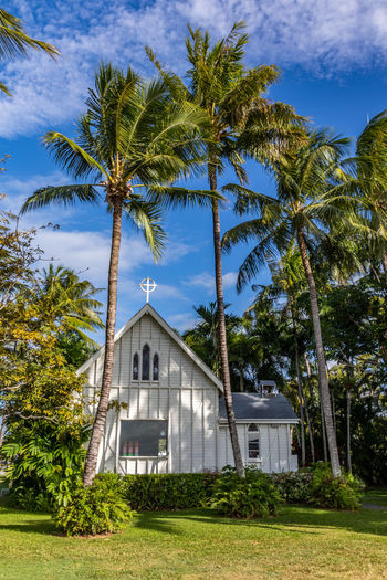 St Mary's by the sea Chapel Australia By The Sea Chapel Church EyeEm Best Shots Tranquility Bell Tower Blue Sky Day Douglas Landscape Mary's Nature No People Outdoors Palm Tree Port Saint Sky Sunny Day Tranquil Scene Tree Tropical