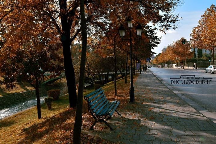 Autumn in Tirana. #autumn #goldcolors #streetphotography EyeEmNewHere Be. Ready.