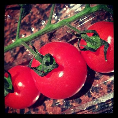 9: red #fmsphotoaday #photoadayoct #red #tomato yum IPhone Red Tomato Fmsphotoaday Photoadayoct